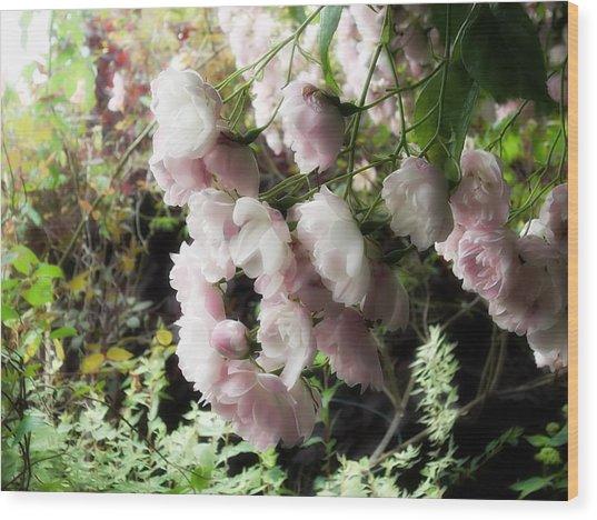 Soft Pink Wood Print by Lee Yang