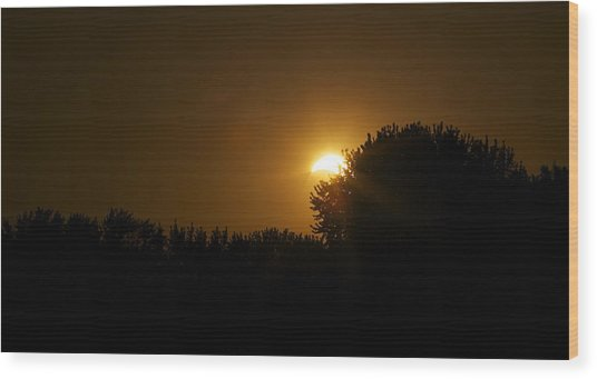 Solar Eclipse Sunset Wood Print