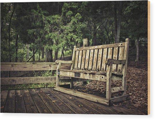 Solitude Wood Print by Elizabeth Wilson