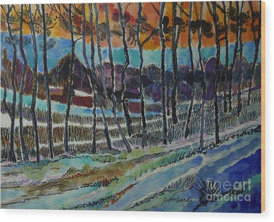 Somerset Pa Snow Scene 2 Wood Print by Donald McGibbon