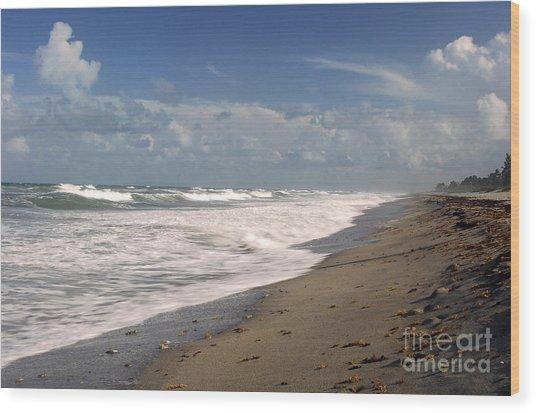 South Hobe Sound Beach Wood Print by Richard Nickson