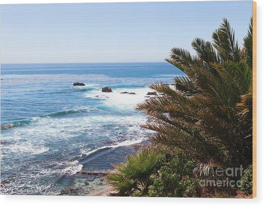 Southern California Coastline Photo Wood Print by Paul Velgos