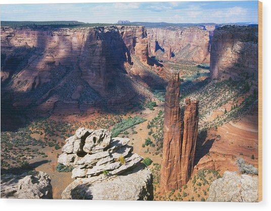 Southwest Canyon  Wood Print by George Oze