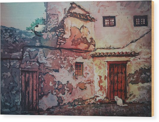 Spanish Courtyard Wood Print by Leslie Redhead