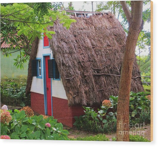 Spanish Thatched Cottage Wood Print