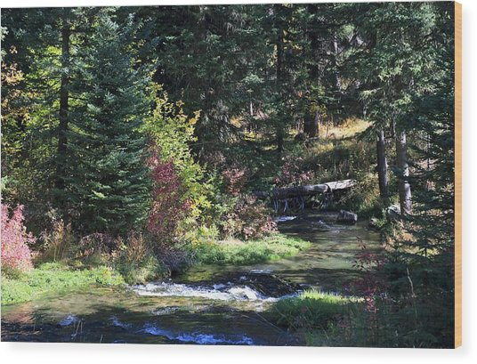 Spearfish Canyon Wood Print