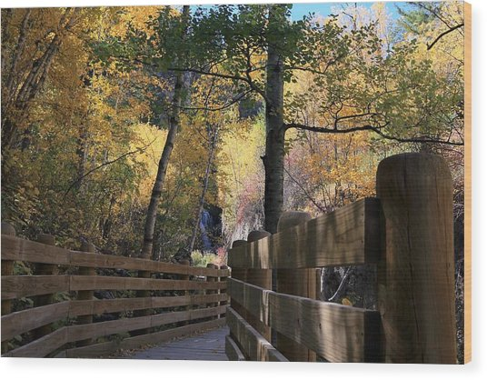 Spearfish Canyon Walkway Wood Print