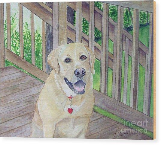Spencer On Porch Wood Print