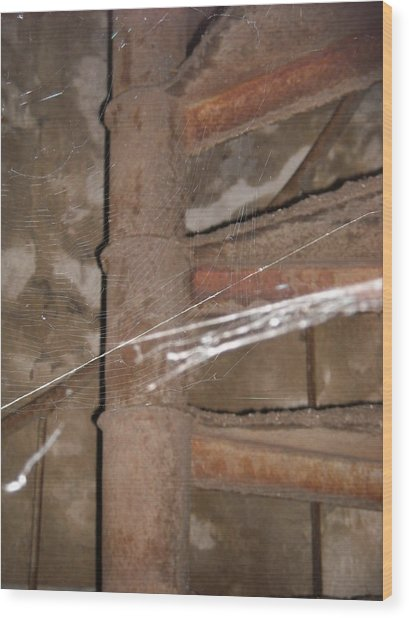 Spider's Stairwell Wood Print