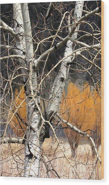 Splash Of Fall Wood Print by Frank Townsley