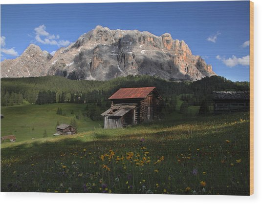 Spring At Santa Croce Wood Print