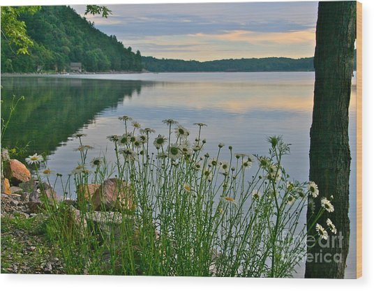 Spring At The Lake Wood Print