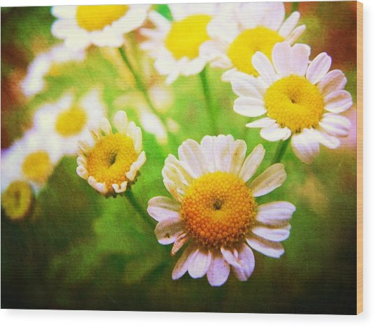 Spring Bouquets Wood Print