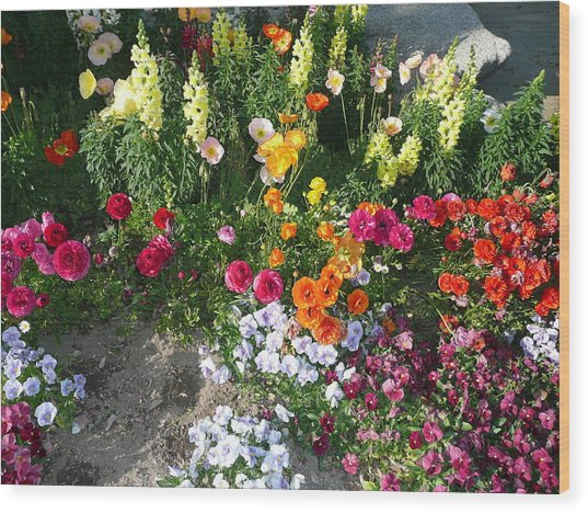 Spring Flower Garden Wood Print