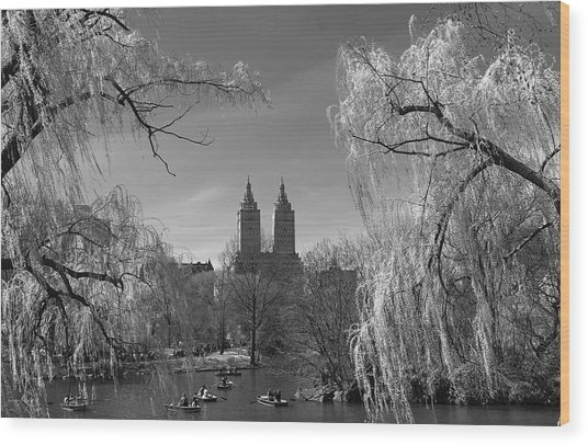 Spring In Central Park Wood Print