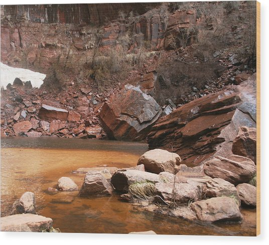 Spring In Zion Park  Wood Print