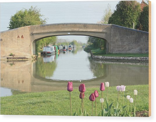 Spring On The Oxford Canal Wood Print