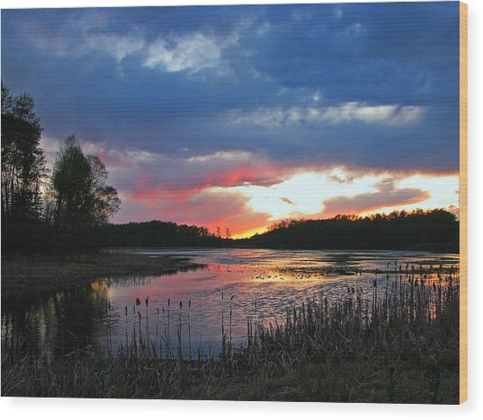 Spring Sunset Wood Print by Sandra Longstreet