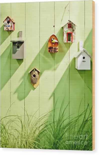 Spring Wooden Wall Wood Print