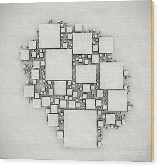 squares September 2012 Wood Print
