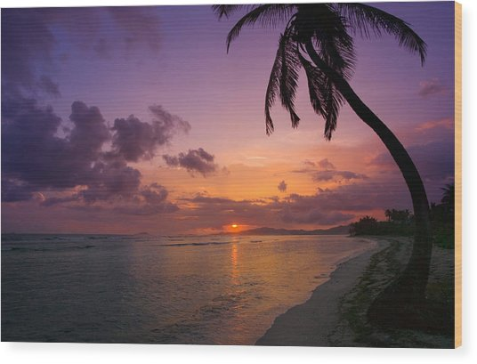 St. Croix Sunrise Wood Print