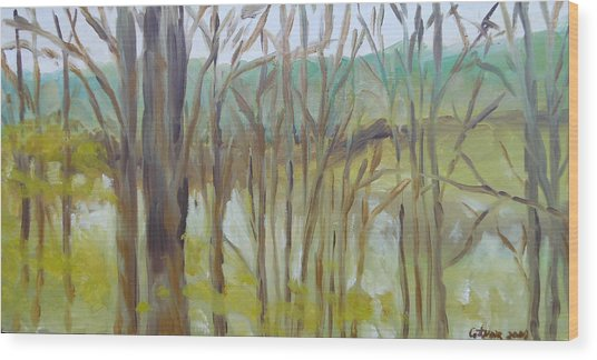 St. Nom La Breteche France Wood Print by Rosemary Cotnoir