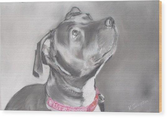 Staffordshire Terrier  Wood Print by Karl Simpson