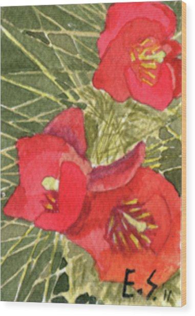 Staghorn Glory Wood Print