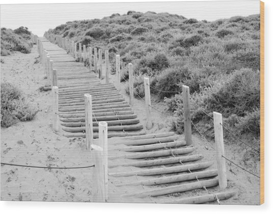 Stairs At Baker Beach Wood Print