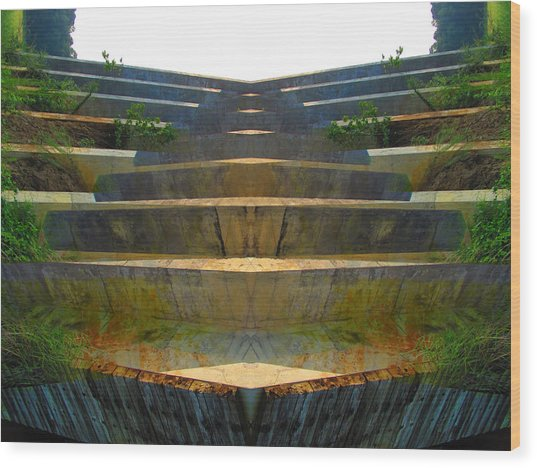 Stairs Wood Print by Michele Caporaso
