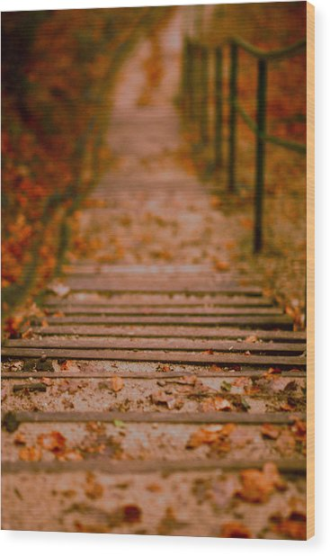 Stairs Wood Print by Vail Joy