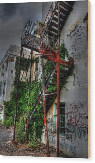 Stairway To Insanity Wood Print by Heather  Boyd