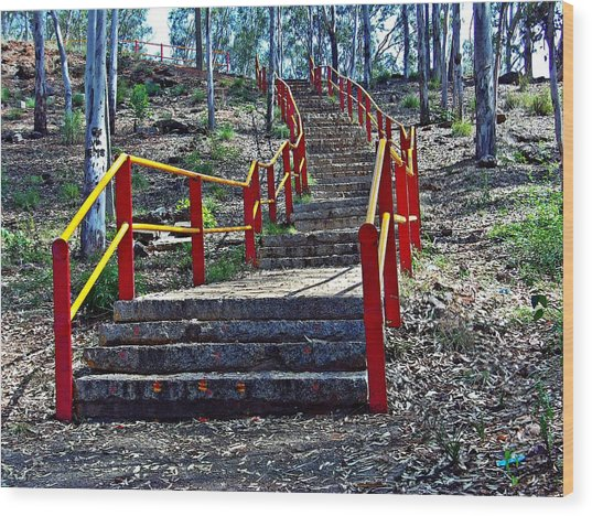 Stairway To Nowhere Wood Print by Peter P G