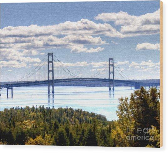 Staits Of Mackinac Wood Print
