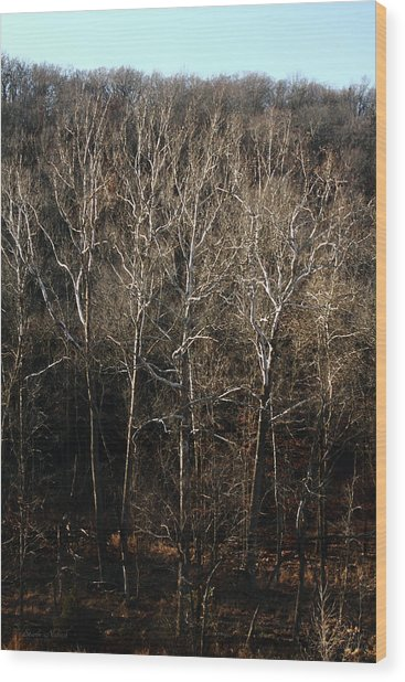 Stark Naked Wood Print by Leroy McLaughlin