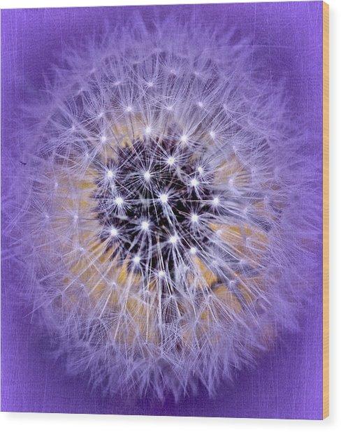 Starry Starry Night Wood Print by Richard Cummings