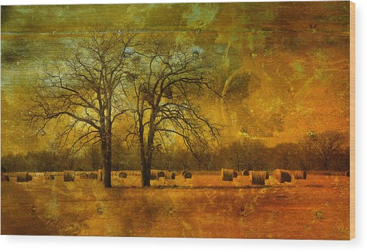 Steely Winter Skies Wood Print