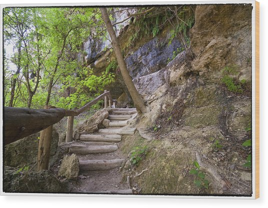 Steps To The Cave Wood Print