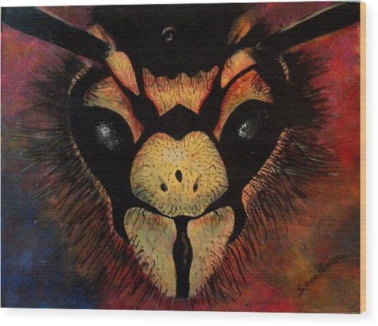 Sting Wood Print