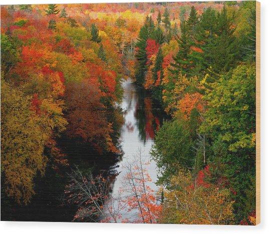 Stolen Fall Wood Print