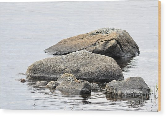 Stone In Calm Water Wood Print by Conny Sjostrom