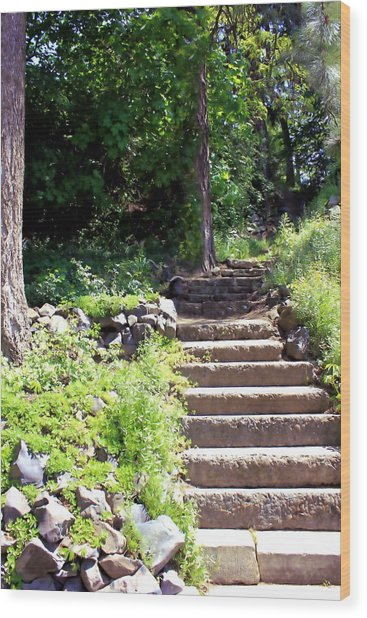 Stone Steps Wood Print by Myrna Migala