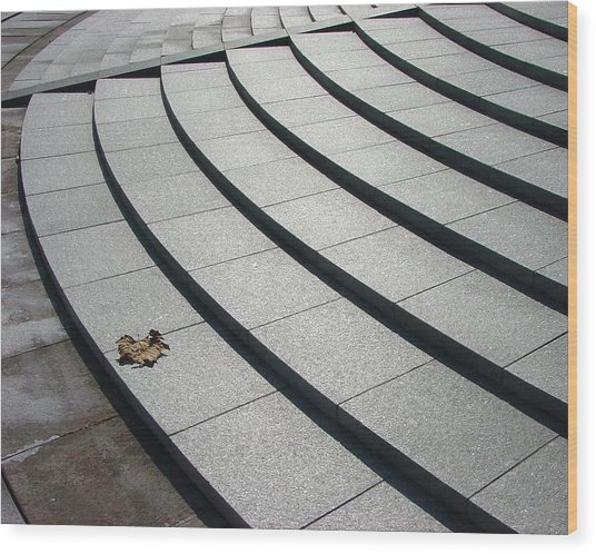 Stone Steps_pyeongchon Park_anyang_south Korea Wood Print by Jon William Lopez