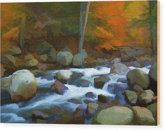 Stony Brook Stream Wood Print