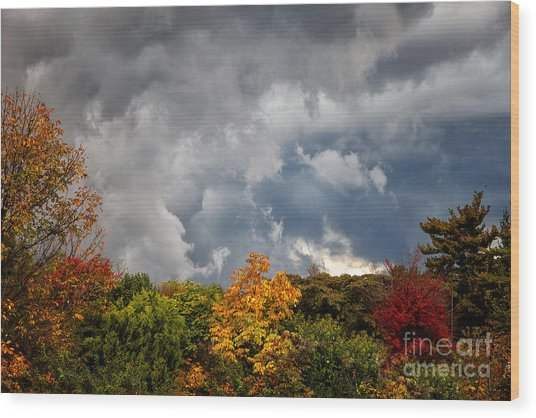 Storms Coming Wood Print