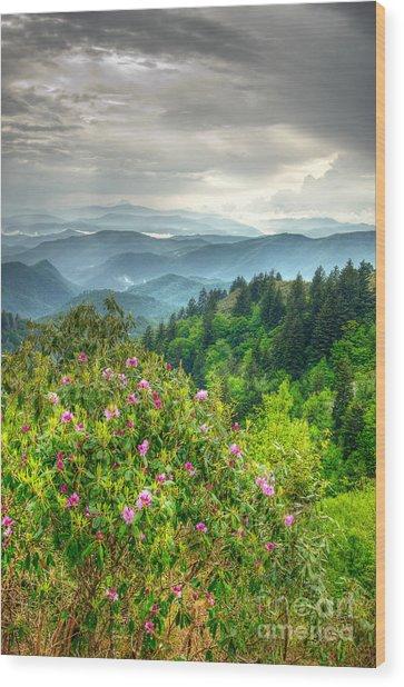 Stormy Spring Skies Wood Print