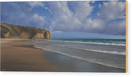 Strands Beach Dana Point Painting Wood Print