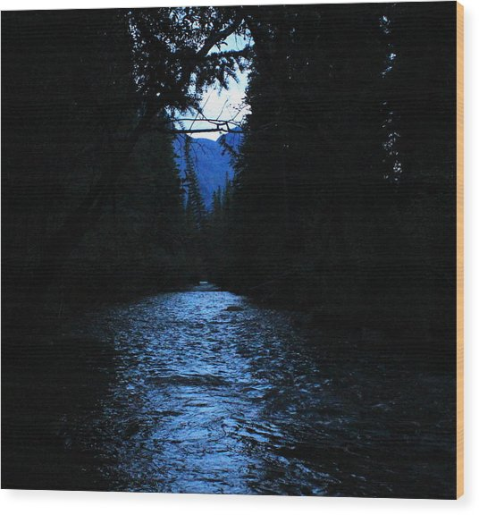Stream In The Deep Dark Forest Wood Print by Donna Barker