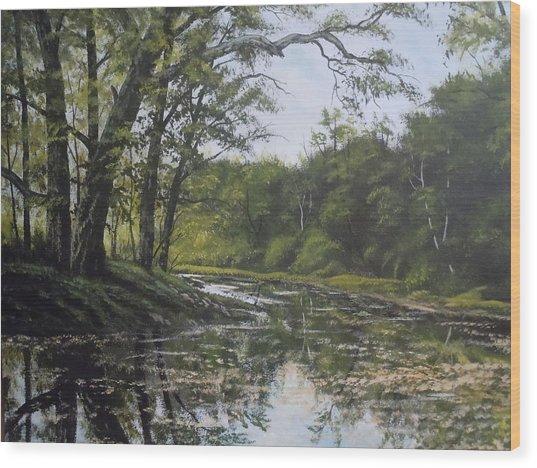 Summer Creek Reflections Wood Print