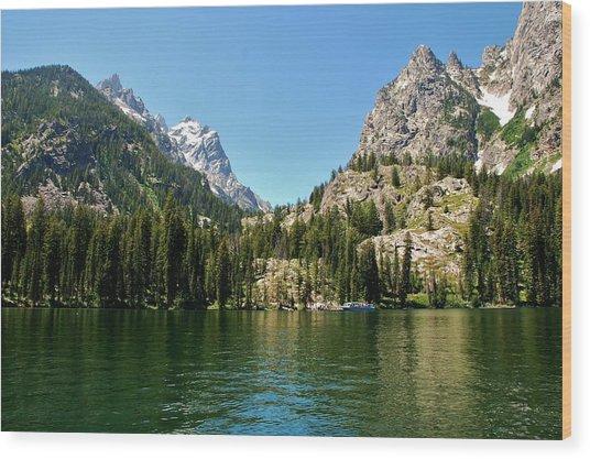 Summer Day At Jenny Lake Wood Print